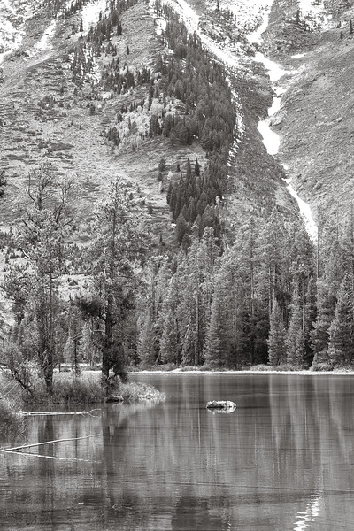 Snake River and Mount Moran
