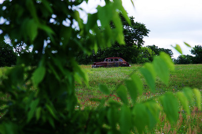 Old_Buick_Field_framed-bush