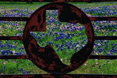 Texas Gate near Brenham, Texas
