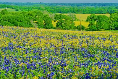 Washington County landscape