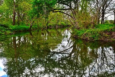 03222017_Washington_County_Creek_Reflections_750_1331