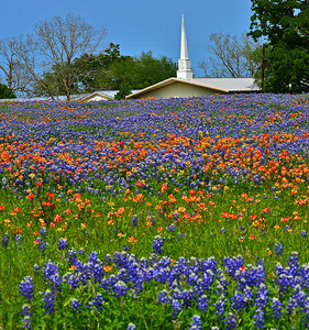 Union Grove Baptist Church, Whitehall, TX