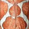 Matthew's Ghost Moth ~ Gazoryctra mathewi