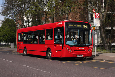 Route 184 - ENL31, LJ09KPT, Arriva London