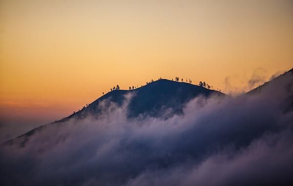 Mountaintop Trees At Mount Batur