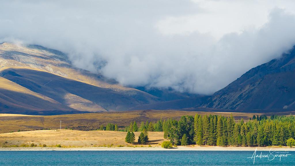 A View Accross Pukaki