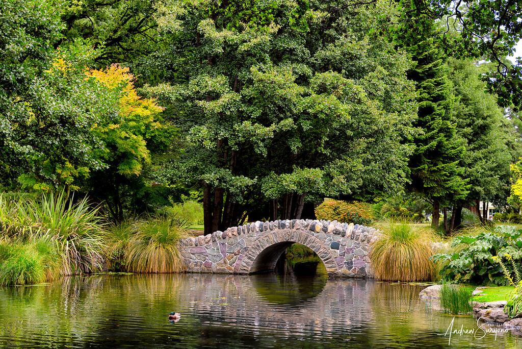 QTOWN03 - Lone Bridge in Queenstown Gardens