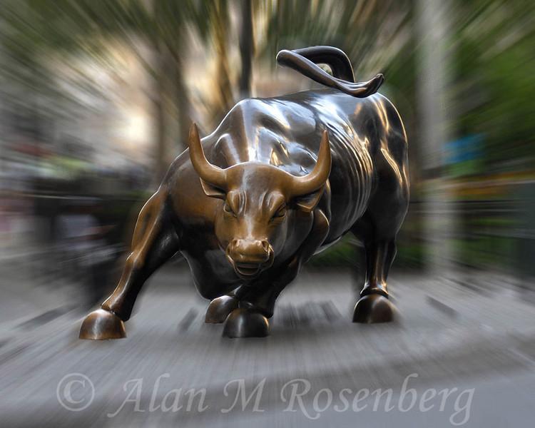 Bull resized