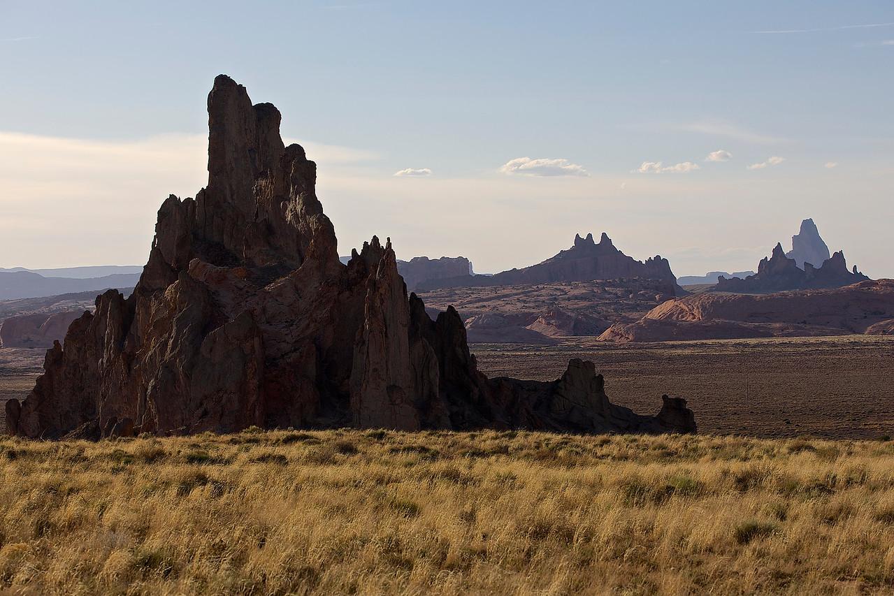 The Welcoming Committee.  Kayenta, Arizona