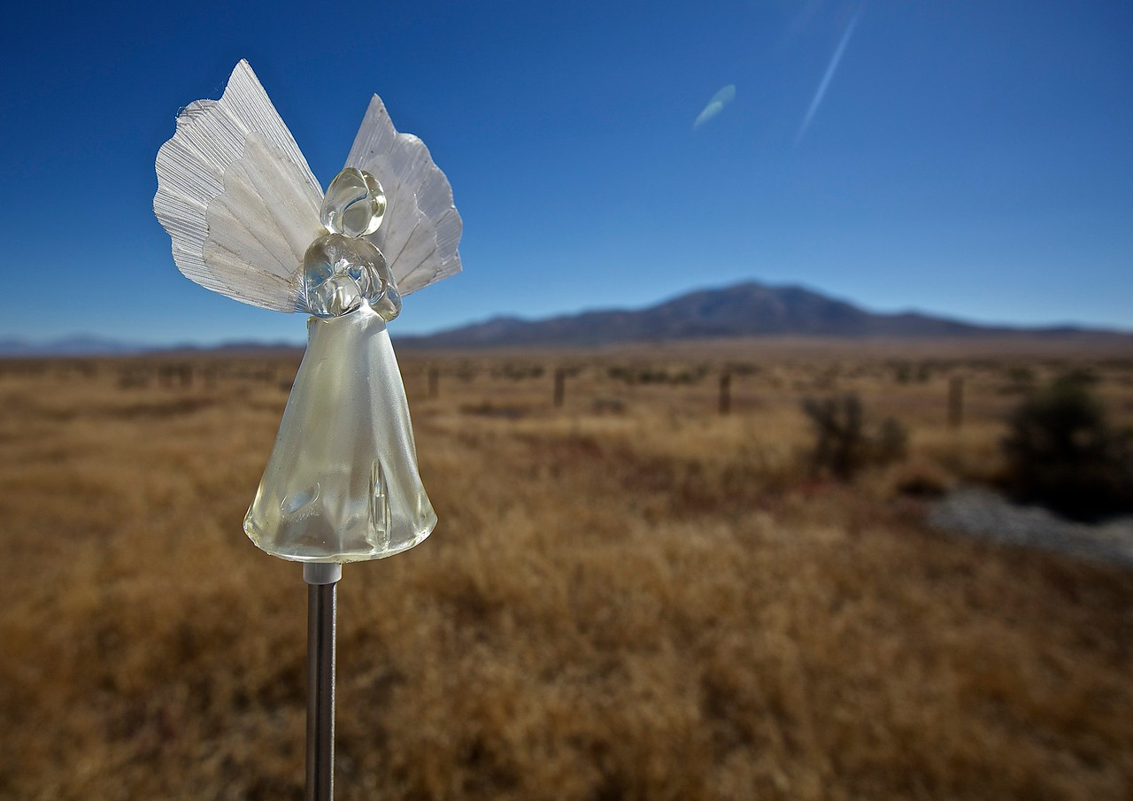 Angel. Montana