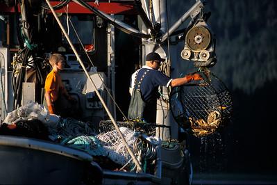 Crabbing in Alaska