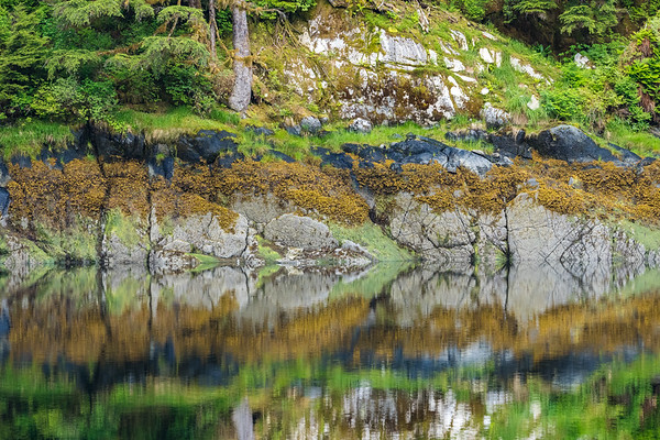 Shoreline Reflection.b