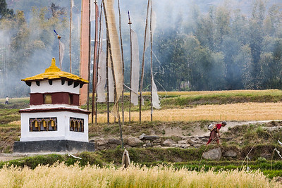 Water-driven prayer wheel, Bhutan.