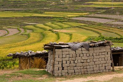 Drying mud bricks, Bhutan.