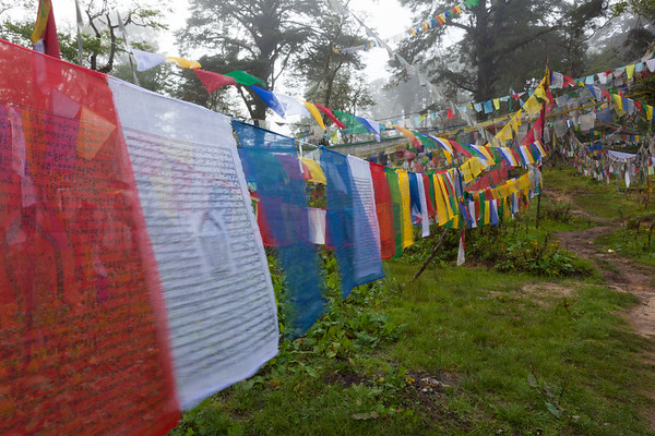 Prayer flags at top of Dochu La, Bhutan.