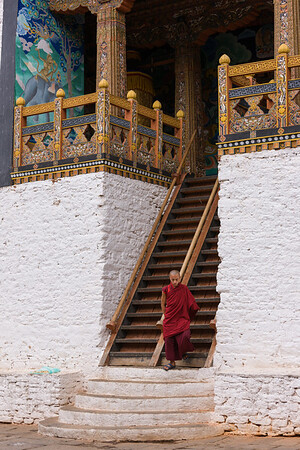 Monk at temple entrance, Punakha Dzong, Bhutan.