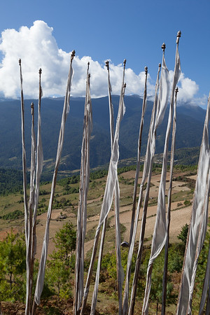 Prayer Flags and Fields, Bhutan.