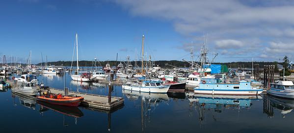 McNeill Harbor Panorama
