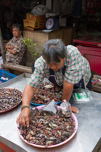 Crabs for sale in market, Bangkok.