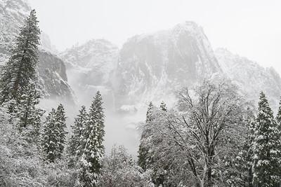 Yosemite Falls in Snowstorm.