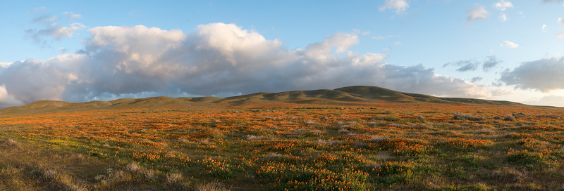 Morning Panorama over Antelope Valley.