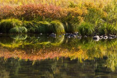 Autumn on the Merced