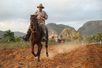 Cowboy, Viñales.