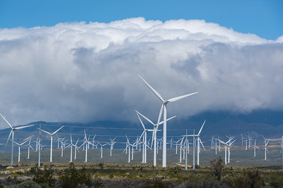 USA, California. Cumulus Clouds billow above windmills  in the Antelope Valley.
