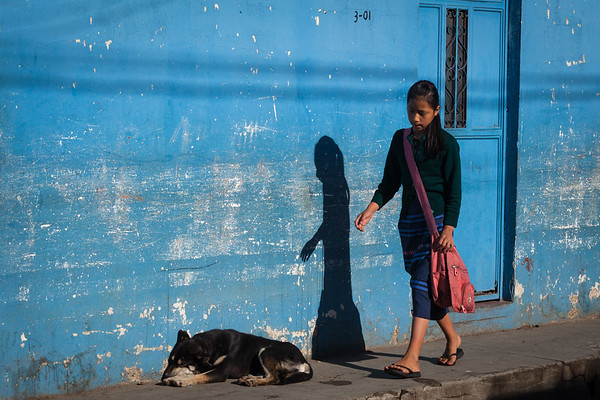 A girl and her shadow, a dog and a blue wall.