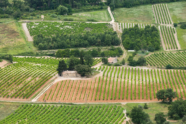 Patchwork Quilt of Fields, Provence.