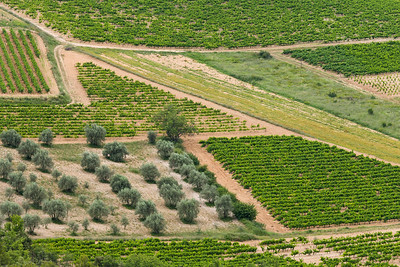 Overhead view of fields in the Luberon, France.