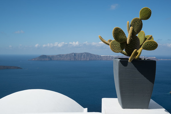 Aegean sea and Cactus, Greece.