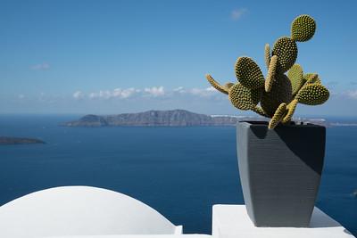 Aegean sea and Cactus, Greece.