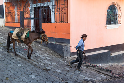 Famer with horse walks through town in Santa Maria de Jesus.
