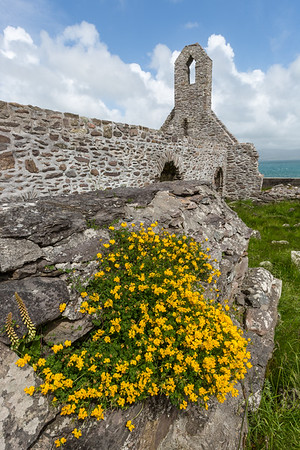 Stone ruins at Ballinskellig Priory, county Kerry.
