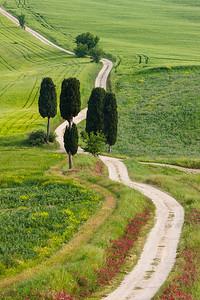 Country Road, Tuscany.