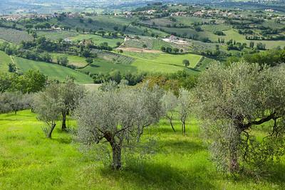 Spring landscape in Umbria, Italy.
