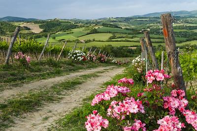 Springtime landscape in Todi, Italy.