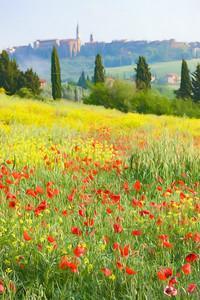 Impressions of Tuscany
