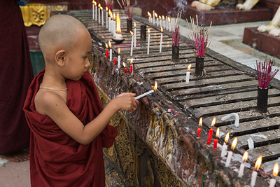 Myanmar, Yangon. A young boy monk holds an offering candle and prays at Shwedagon Pagoda.