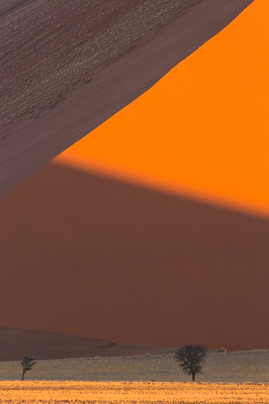 Shapes and Shadows of Sand Dunes, Namibia.