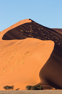 S-Curve on the Dunes