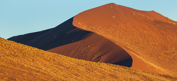 Shapes of Dunes
