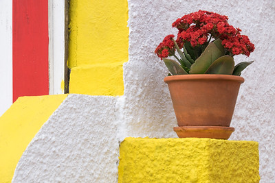 Red and Yellow House Decor