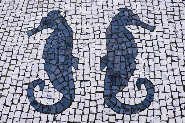 Seahorse Design in Cobblestones.