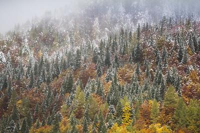 Autumn Snowstorm 2, Slovenia