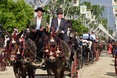 Horse-drawn carriages parade around at the fair.