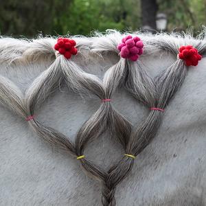 Dressed up horse's mane, Seville.