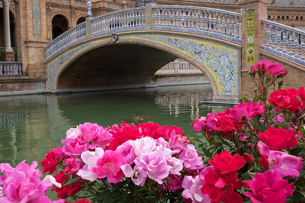 Scene from Plaza de España with roses.