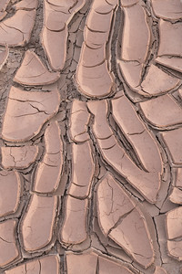 Dried Mud Pattern, Utah.